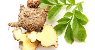 Glucomanano (Konjac), ¿es eficaz para bajar de peso?